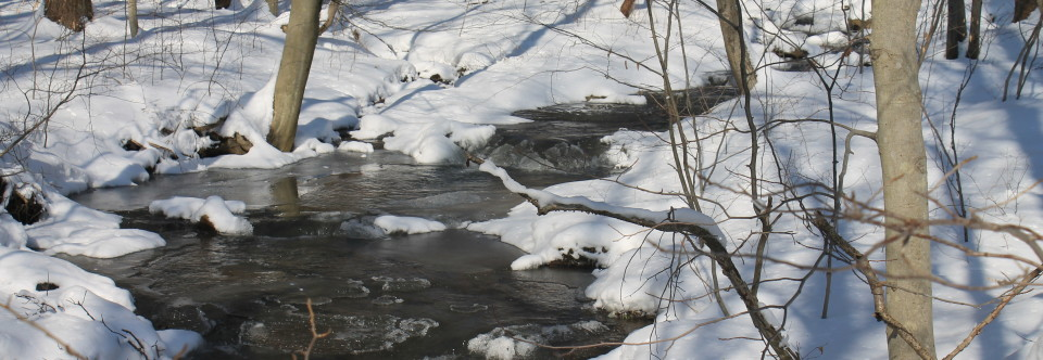 Stony Run Protected, Placed on Existing Use List