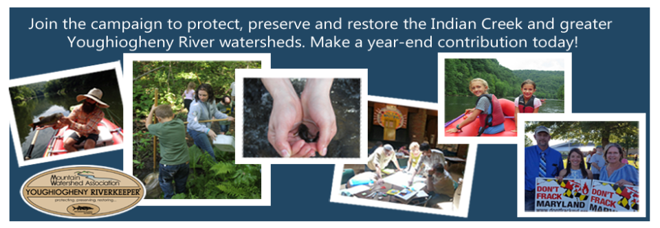 Support Clean Water with a Year-End Contribution